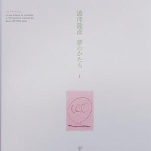 澁澤龍彦 夢のかたち I     平出隆 vww02