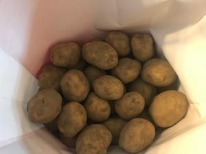 新潟県上越産 無農薬・無化学肥料 じゃがいも 1kg