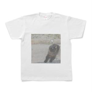 くろねこTシャツ