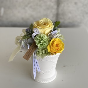 Preserved flowers -yellow-