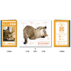 ペット名刺_長方形2つ折りタイプ_学習帳デザイン(1個50枚裏面込)_fold_rec001-c