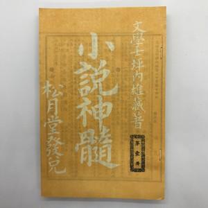 小説神髄(精選名著復刻全集) / 坪内逍遥(著)