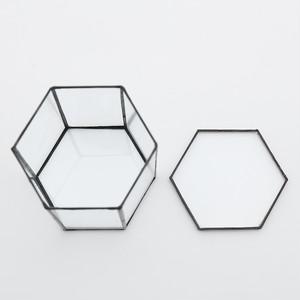 Hexagonal TerrariumL(A_black)