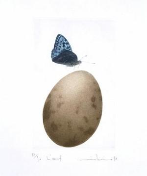 渡邊 幹夫 「卵」