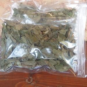 乾燥カレーリーフ25g Dry Curry Leaves