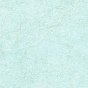 阿波 金和紙(マニラ麻紙)L21