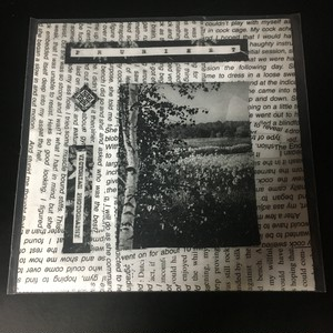 "Prurient ‎– Victorian Photography(7""EP)USED"