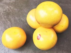 フロリダ産ルビーグレープフルーツ 5個セット