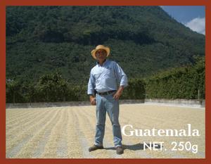 250g グアテマラ