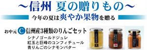 お中元特集 信州産 3種類のりんごセット C(