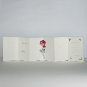 "gift book ""Let Me Bloom"""