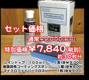 【ケミックス】レイントップセット(レイントップ100ml+スポンジ+クロスのセット)
