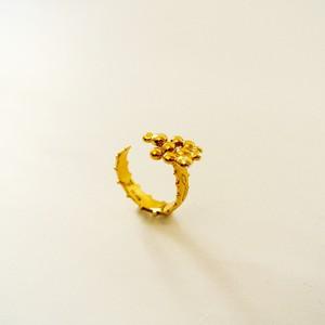 Shizuku Ring (G.D)