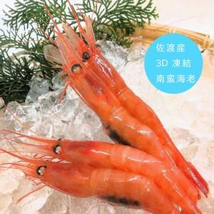 佐渡産甘えび3D凍結