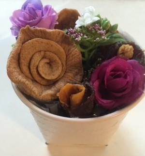 寄せ植え(小) -Plantación en cesto(pequeño)-