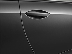 Lexus RC-F Door Edge Guards
