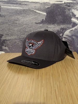 99458-17VM CAP-PERFORMANCE,EAGLE,GREY