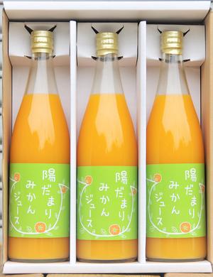 陽だまりファーム 三ヶ日青島みかんジュース 720ml 3本ギフト包装