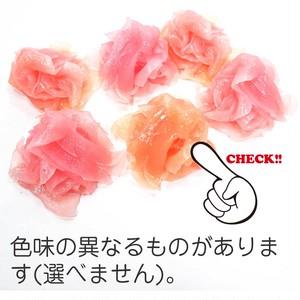 生姜(がり) 食品サンプル マグネット