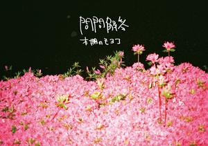 【CD】本棚のモヨコ 限定Single『問問解答』