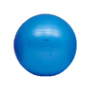 【ボディボール】 65(青) H-7262