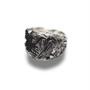 【送料無料/翌日発送】Silver Antique Ring【品番 19S2001】