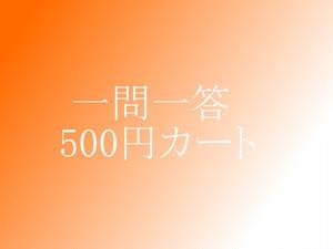500円カート・一問一答