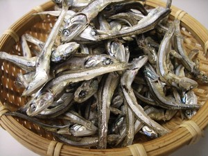 煮干いりこ(250g)