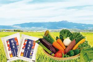 【菊池市特産品・名産品送料無料キャンペーン】菊池米と菊池産野菜の詰め合わせ