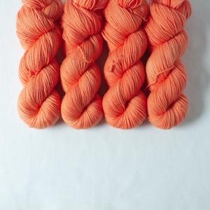 裏切りのオレンジ (Sock75)