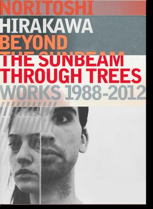 平川典俊「木漏れ日の向こうに Works 1988–2012」展カタログ (Noritoshi Hirakawa )