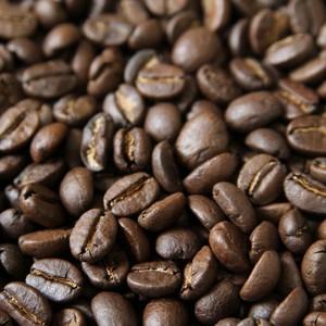 コーヒー豆:タンザニア キゴマキボー ディープブルーAA