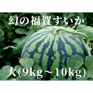 福賀すいか【大】(9kg〜10kg/数日はスイカ三昧サイズ!)
