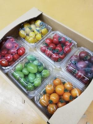 ミニトマト詰め合わせギフトBOX 2箱