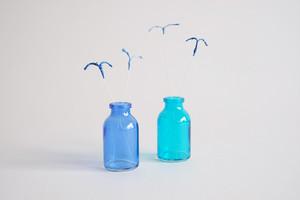青い鳥の住処