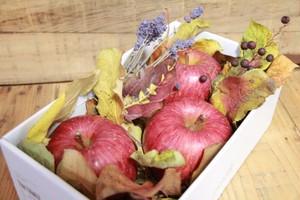長野県産りんご サンふじ ギフト用1kg箱