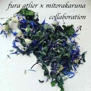fura atelier × mitorakaruna collaboration A