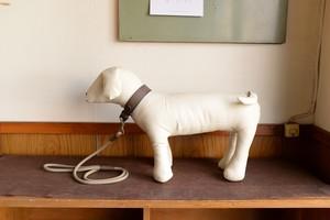 中型犬のグレーの革の首輪とリードのセット S-mg3L3tb