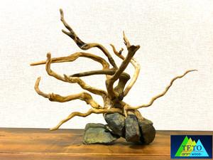 流木 A01 溶岩石セット