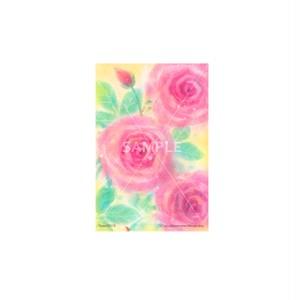 【選べるポストカード3枚セット】No.135 Rose2015