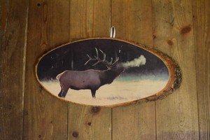 USED USA製 モンタナ木製壁掛け Deer lodge,MT ヘラジカ エルク