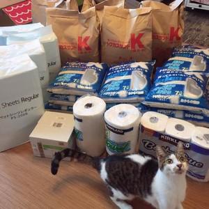 【ネコ支援】 館の猫のトイレ砂