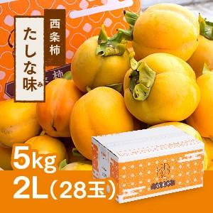 西条柿 2L 28玉(5kg) たしな味