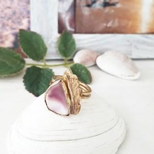【12号 】  brass ring -purple shell-