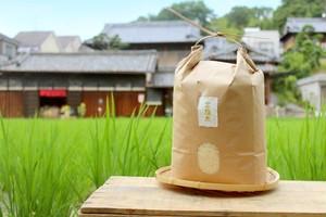 新米【金鵄米:5kg:白米】きんしまい2019年産ヒノヒカリ(玄米・5分づき対応可)