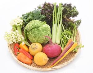 変わり種野菜セット〔送料無料、野菜セット、詰合せ、詰め合わせ、珍しい野菜〕