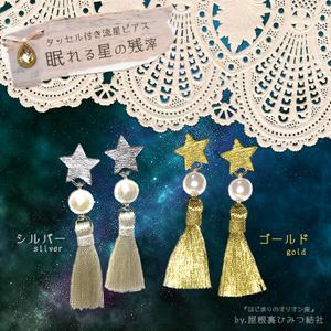 【ピアス】眠れる星の残滓