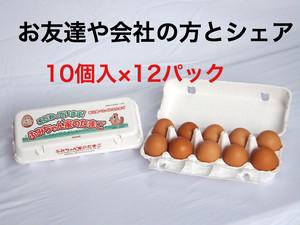 10個入×12パック ふみちゃん家のたまご