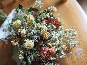 【ドライスワッグ】春の小花