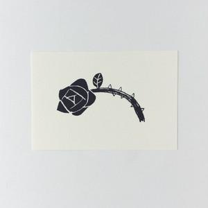 ポストカード 黒い薔薇